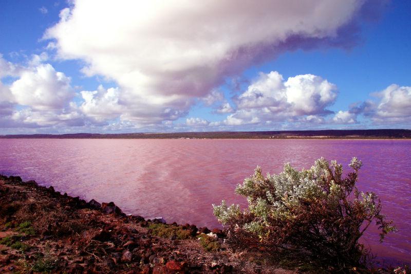 Η κόκκινη λίμνη Hutt Lagoon - e-Nautilia.gr | Το Ελληνικό Portal για την Ναυτιλία. Τελευταία νέα, άρθρα, Οπτικοακουστικό Υλικό