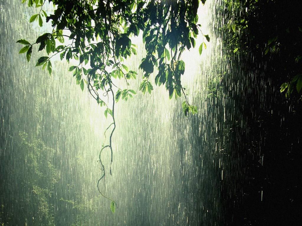 Βροχές και ομίχλη την για την Παρασκευή - e-Nautilia.gr | Το Ελληνικό Portal για την Ναυτιλία. Τελευταία νέα, άρθρα, Οπτικοακουστικό Υλικό