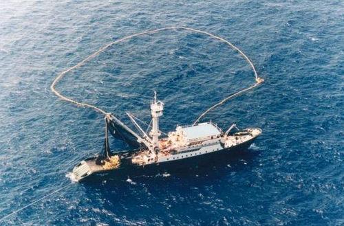 Aπαγόρευση της αλιείας τόνου από ελληνικά και γαλλικά γρι-γρι - e-Nautilia.gr | Το Ελληνικό Portal για την Ναυτιλία. Τελευταία νέα, άρθρα, Οπτικοακουστικό Υλικό