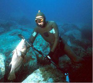 Παράνομη αλιεία στην Αλόννησο - e-Nautilia.gr | Το Ελληνικό Portal για την Ναυτιλία. Τελευταία νέα, άρθρα, Οπτικοακουστικό Υλικό