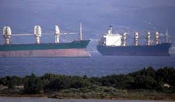 Καταστροφικές συνέπειες από την αγκυροβόληση πλοίων στον κόλπο Βατίκων - e-Nautilia.gr   Το Ελληνικό Portal για την Ναυτιλία. Τελευταία νέα, άρθρα, Οπτικοακουστικό Υλικό