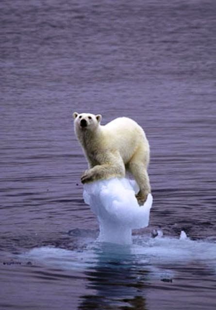H κλιματική αλλαγή «καμουφλάρεται» - e-Nautilia.gr | Το Ελληνικό Portal για την Ναυτιλία. Τελευταία νέα, άρθρα, Οπτικοακουστικό Υλικό