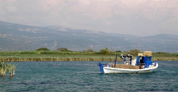 Σύλληψη για παράβαση αλιευτικού κώδικα - e-Nautilia.gr | Το Ελληνικό Portal για την Ναυτιλία. Τελευταία νέα, άρθρα, Οπτικοακουστικό Υλικό