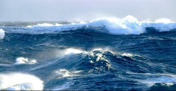 sea_storm_nautilia_