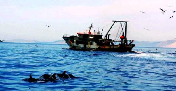 Σύλληψη Κυβερνήτη Α/Κ σκάφους στην Κάλυμνο - e-Nautilia.gr | Το Ελληνικό Portal για την Ναυτιλία. Τελευταία νέα, άρθρα, Οπτικοακουστικό Υλικό