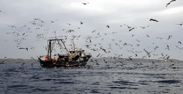 Άδεια αλίευσης με το αλιευτικό εργαλείο δίχτυ τράτας βυθού - e-Nautilia.gr | Το Ελληνικό Portal για την Ναυτιλία. Τελευταία νέα, άρθρα, Οπτικοακουστικό Υλικό