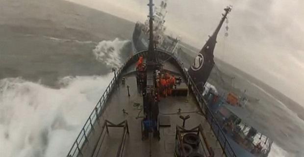 «Ναυμαχία» στη Νέα Ζηλανδία!Φαλαινοθηρικό εμβολίζει πλοίο ακτιβιστών [vid] - e-Nautilia.gr | Το Ελληνικό Portal για την Ναυτιλία. Τελευταία νέα, άρθρα, Οπτικοακουστικό Υλικό
