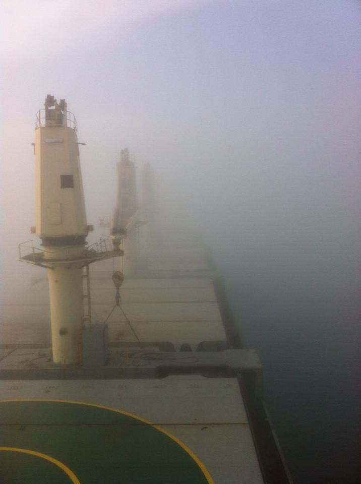 pontoporos_nautilia_fog_