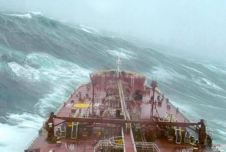 pontoporos_nautilia_storm_