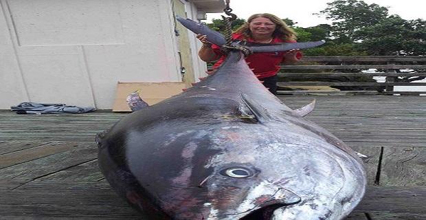 Γυναίκα-ψαράς έπιασε γιγάντιο τόνο βάρους 411,6 κιλών![pics+vid] - e-Nautilia.gr | Το Ελληνικό Portal για την Ναυτιλία. Τελευταία νέα, άρθρα, Οπτικοακουστικό Υλικό
