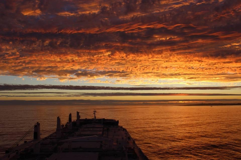 pontoporods_nautilia_sunset_
