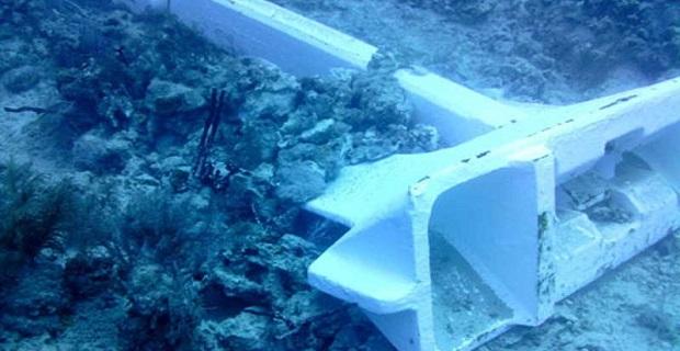 Η άγκυρα κρουαζιερόπλοιου προκάλεσε καταστροφή σε κοράλλια στην Καραϊβική - e-Nautilia.gr | Το Ελληνικό Portal για την Ναυτιλία. Τελευταία νέα, άρθρα, Οπτικοακουστικό Υλικό