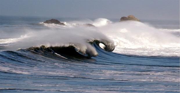 waves_nautilia_