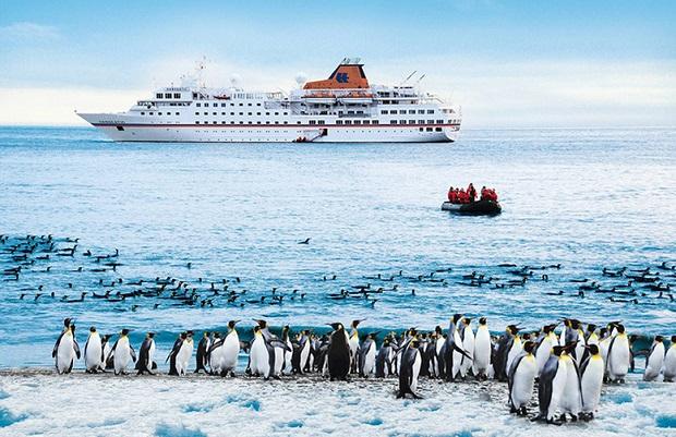 Έτοιμοι για σαλπάρισμα και οι φίλοι μας οι πιγκουίνοι! - e-Nautilia.gr | Το Ελληνικό Portal για την Ναυτιλία. Τελευταία νέα, άρθρα, Οπτικοακουστικό Υλικό