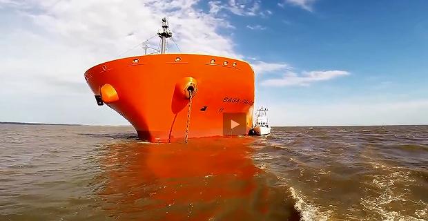 Προσάραξη του φορτηγού πλοίου «Saga Falcon» [video] - e-Nautilia.gr | Το Ελληνικό Portal για την Ναυτιλία. Τελευταία νέα, άρθρα, Οπτικοακουστικό Υλικό
