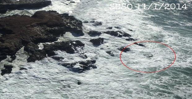 4 έχασαν τη ζωή τους μετά από ψάρεμα καβουριών - e-Nautilia.gr | Το Ελληνικό Portal για την Ναυτιλία. Τελευταία νέα, άρθρα, Οπτικοακουστικό Υλικό