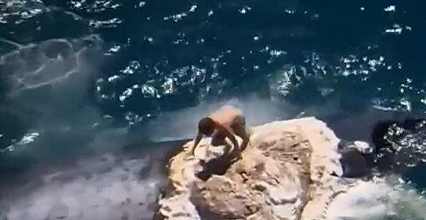 Σερφ επάνω σε νεκρή φάλαινα με παρέα λευκούς καρχαρίες [video] - e-Nautilia.gr   Το Ελληνικό Portal για την Ναυτιλία. Τελευταία νέα, άρθρα, Οπτικοακουστικό Υλικό