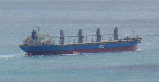 Απομάκρυνση πλοίου από λιμάνι μετά την ανακάλυψη προνύμφων εντόμων! - e-Nautilia.gr | Το Ελληνικό Portal για την Ναυτιλία. Τελευταία νέα, άρθρα, Οπτικοακουστικό Υλικό