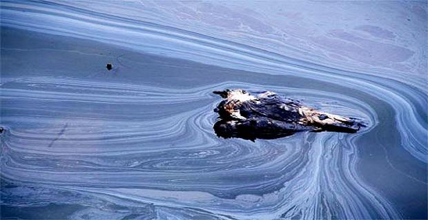 Πρόστιμο 1,5 εκατομμυρίου σε γερμανικές ναυτιλιακές για παράνομη απόρριψη αποβλήτων - e-Nautilia.gr | Το Ελληνικό Portal για την Ναυτιλία. Τελευταία νέα, άρθρα, Οπτικοακουστικό Υλικό