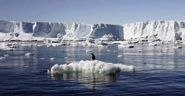 Στην Ανταρκτική το μεγαλύτερο καταφύγιο θαλάσσιας ζωής στον κόσμο - e-Nautilia.gr   Το Ελληνικό Portal για την Ναυτιλία. Τελευταία νέα, άρθρα, Οπτικοακουστικό Υλικό