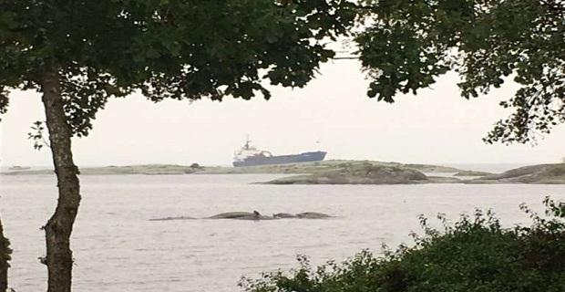 ΑΠΙΣΤΕΥΤΟ:  Πλοίο προσάραξε όταν ο Ρώσος καπετάνιος και ο ανθυποπλοίαρχος μέθυσαν και τους πήρε ο ύπνος! - e-Nautilia.gr | Το Ελληνικό Portal για την Ναυτιλία. Τελευταία νέα, άρθρα, Οπτικοακουστικό Υλικό