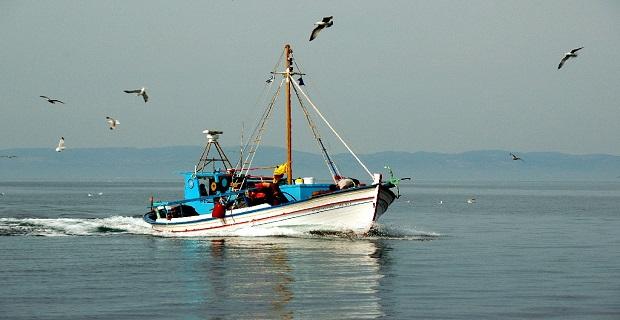 Απαγόρευση αλιείας σε περιοχές αρμοδιότητας Λιμεναρχείου Σαρωνικού - e-Nautilia.gr | Το Ελληνικό Portal για την Ναυτιλία. Τελευταία νέα, άρθρα, Οπτικοακουστικό Υλικό