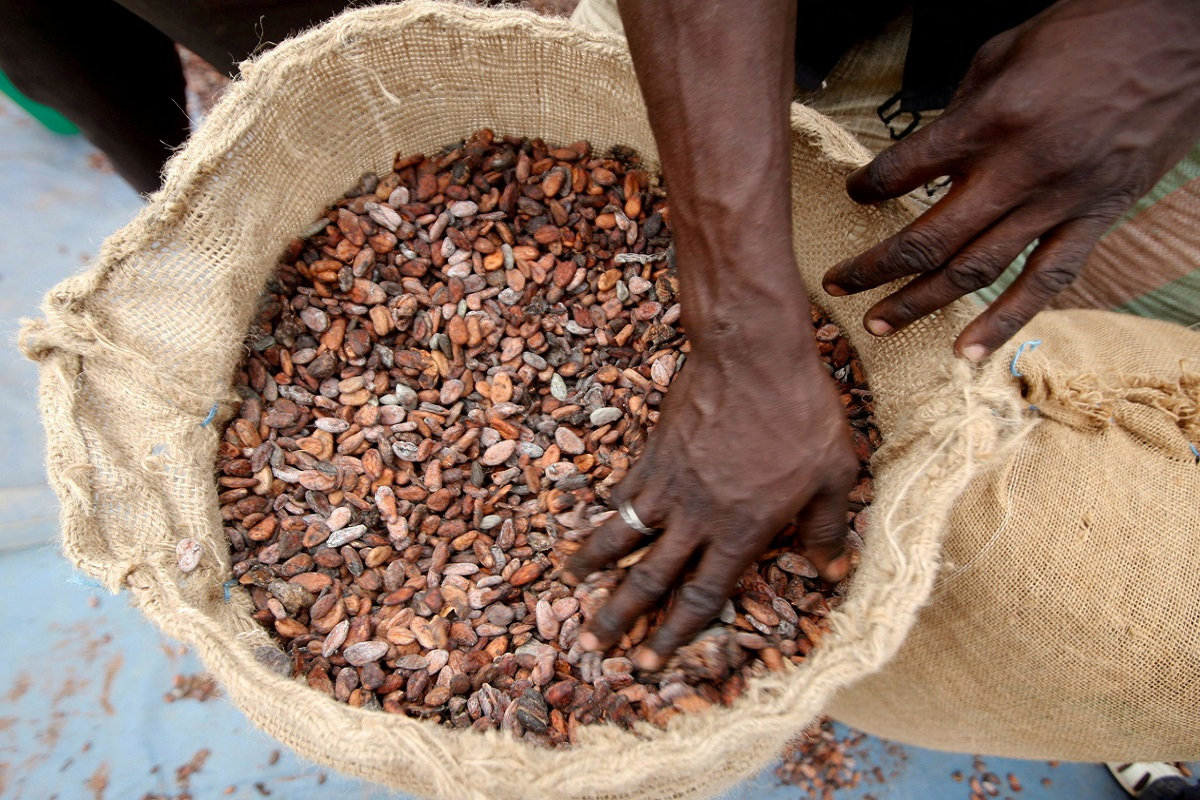 Η σοκολάτα είναι το τελευταίο θύμα της συμφόρησης που αντιμετωπίζουν τα λιμάνια - e-Nautilia.gr | Το Ελληνικό Portal για την Ναυτιλία. Τελευταία νέα, άρθρα, Οπτικοακουστικό Υλικό