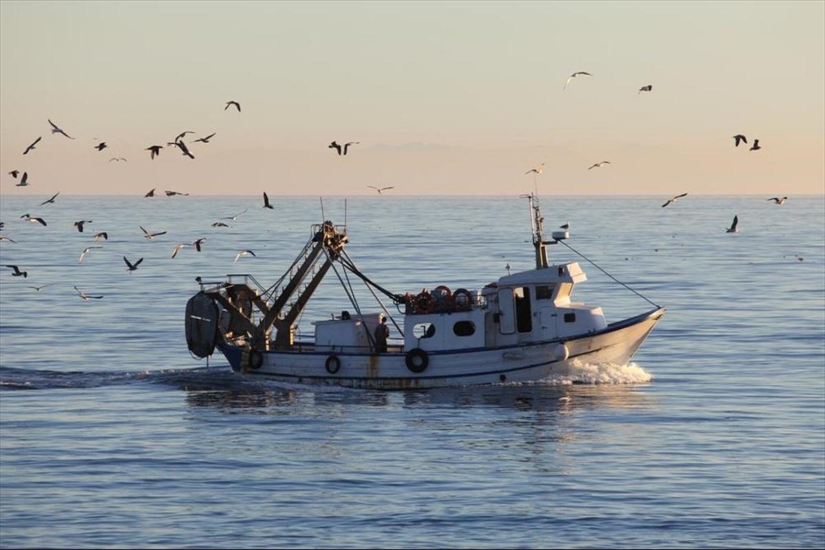 ΕΛΣΤΑΤ: Σημαντική μείωση της αλιείας το 2020 - e-Nautilia.gr | Το Ελληνικό Portal για την Ναυτιλία. Τελευταία νέα, άρθρα, Οπτικοακουστικό Υλικό
