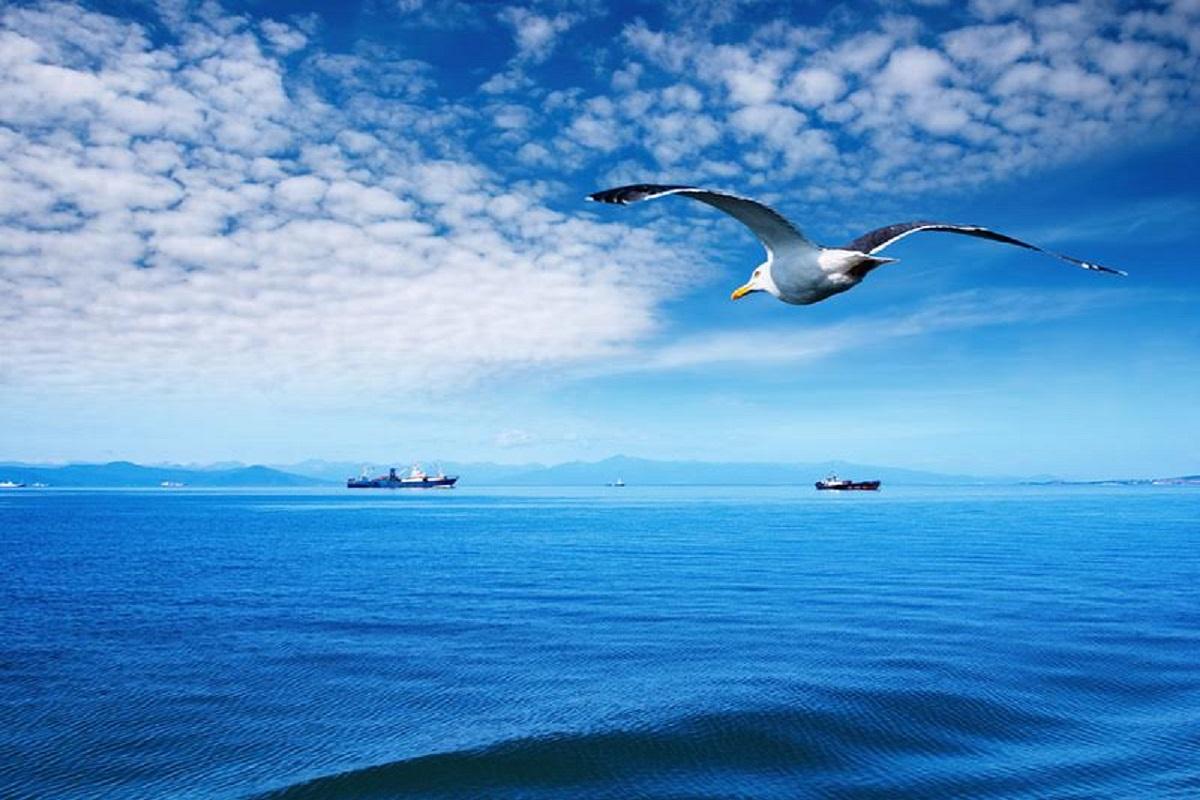 Η HELMEPA συμβάλλει στην απανθρακοποίηση της ναυτιλίας - e-Nautilia.gr   Το Ελληνικό Portal για την Ναυτιλία. Τελευταία νέα, άρθρα, Οπτικοακουστικό Υλικό